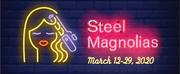 Temple Theatre Presents STEEL MAGNOLIAS