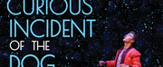 Sheas Performing Arts Center Announces New Dates For THE CURIOUS INCIDENT OF THE DOG IN THE NIGHT-TIME