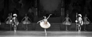 THE NUTCRACKER Will Be Performed by the Boston Ballet This November Photo