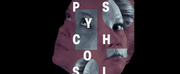 BWW Finland Review: SARAH KANES 4.48 PSYCHOSIS AT KOKO THEATRE