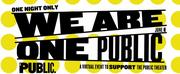 The Public Theater Postpones WE ARE ONE PUBLIC Event
