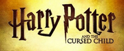 Suspension of HARRY POTTER UK Performances Extended to July 21