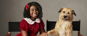 Photo: First Look at Celina Smith as the Title Role in ANNIE LIVE!