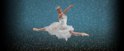 San Francisco Ballet Presents NUTCRACKER ONLINE Photo