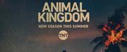 TNT Renews Hit Series ANIMAL KINGDOM for a Sixth & Final Season Photo