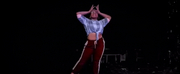 BWW Review: JOY! WITH MARIA SIMPKINS AND VATO TSIKURISHVILI at Synetic Theater