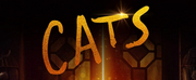 CATS Will Be Available on DVD, Blu-ray, and Digital Download on April 7