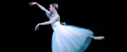 Photo Flash: Roma City Ballet Company Luciano Cannito  Presenta  SCHIACCIANOCI
