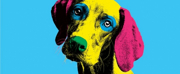 Casting Announced For DOG SHOW at The Pleasance This Christmas