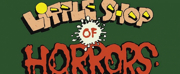 LITTLE SHOP OF HORRORS Will Be Performed at Hays Community Theatre This Week