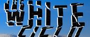 Douglas Cole Releases New Noir Drama THE WHITE FIELD Photo