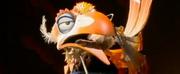 VIDEO: Meet THE LION KING Tour\