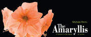 Firehall Arts Centre & The Search Party Present The World Premiere Of THE AMARYLLIS Photo