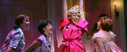 GREASE Prequel RISE OF THE PINK LADIES Greenlit at Paramount+