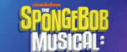 THE SPONGEBOB MUSICAL: LIVE ON STAGE! Draws 1.7 Million Viewers