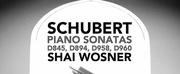 Shai Wosner\