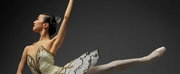 National Ballet Of Japans New Year Ballet to Stream For Free Online Photo