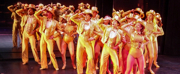 BWW Review: Syracuse University Department of Drama's  Production of A CHORUS LINE at Syracuse Stage