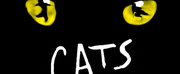 CATS Comes to Theatre Memphis