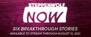 Steppenwolf NOW: 50% Off Six Groundbreaking Stories Photo