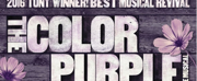 THE COLOR PURPLE On Sale At DPAC September 13th