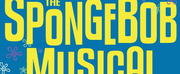 THE SPONGEBOB MUSICAL to be Presented at The Play Group Theatre