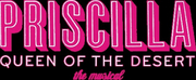 Mercury Theater Chicago Announces Cast Of PRISCILLA QUEEN OF THE DESERT