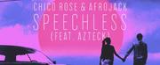Afrojack X Chico Rose Reveal New Lyric Video For Sad Photo