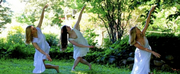 Neighbourhood Dance Works Presents Kittiwake Dance Theatre in Your Garden Photo
