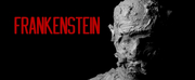 Photo Flash: FRANKENSTEIN Announced At Open Stage Online Photo