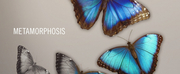 Jupiter String Quartet Releases New Album Metamorphosis June 12