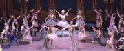The Australian Ballet School Presents SUMMER SEASON 2019