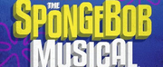 THE SPONGEBOB MUSICAL: LIVE ON STAGE is Now Streaming!