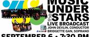 Wheeling Symphony Orchestra Presents MUSIC UNDER THE STARS Live on TV Photo