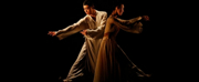 China National Opera Will Virtually Release SPRING ON DANCE