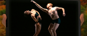 Virtual Hudson Valley Dance Festival To Stream Captivating Evening of Dance, October 10&nb Photo