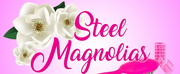 BWW Review: STEEL MAGNOLIAS at Castle Craig Players