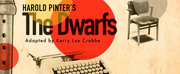 Guest Blog: Harry Burton On A Zoom Production of Harold Pinters THE DWARFS Photo