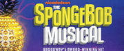 BWW Review: THE SPONGEBOB MUSICAL Brings Spectacular Visuals, Startling Energy to Nashville\