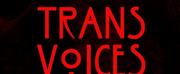 Trans Voices Cabaret Returns Next Month