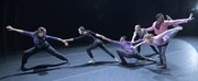BWW Review: NEW DANCE PARTNERS at Carlsen Center