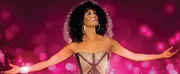 THE GREATEST LOVE OF ALL: A TRIBUTE TO WHITNEY HOUSTON Starring Belinda Davids Comes to Van Wezel