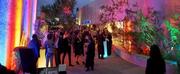 Scottsdale Arts Takes Bold, New Direction With Glamorous Gala