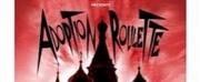 BWW Interview: Joel Vig of ADOPTION ROULETTE at Desert Ensemble Theater