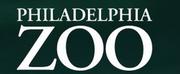 Philadelphia Zoo Temporarily Closes to the Public