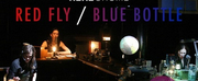 HERE@Home Presents a Stream of RED FLY/BLUE BOTTLE