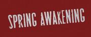 BWW Feature: MUSICAL SPRING AWAKENING AL UITVERKOCHT DELAMAR West Photo
