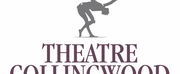 Theatre Collingwood Receives Community Support To Continue Presenting Safely During The Pa Photo