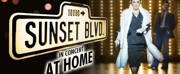 Curve Will Re-Release SUNSET BOULEVARD AT HOME This May Photo