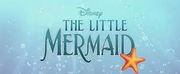 Disney Pauses Production on THE LITTLE MERMAID Photo